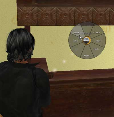 The Basics in Second Life